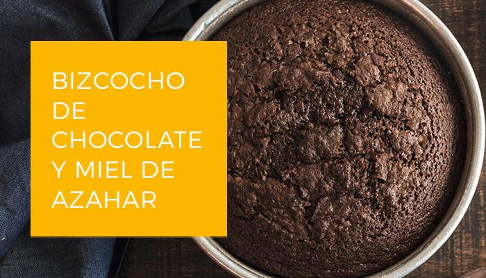 Imagen Bizcocho de Chocolate Es.
